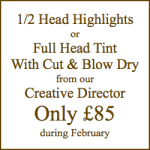 Half Head Highlights At My Home Your Salon Hove February Offer